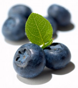 973blueberries.jpg